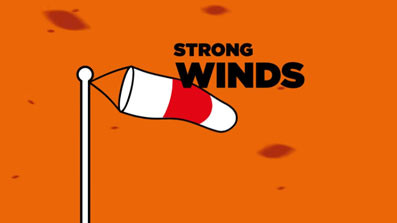 Bushfire fact - strong winds