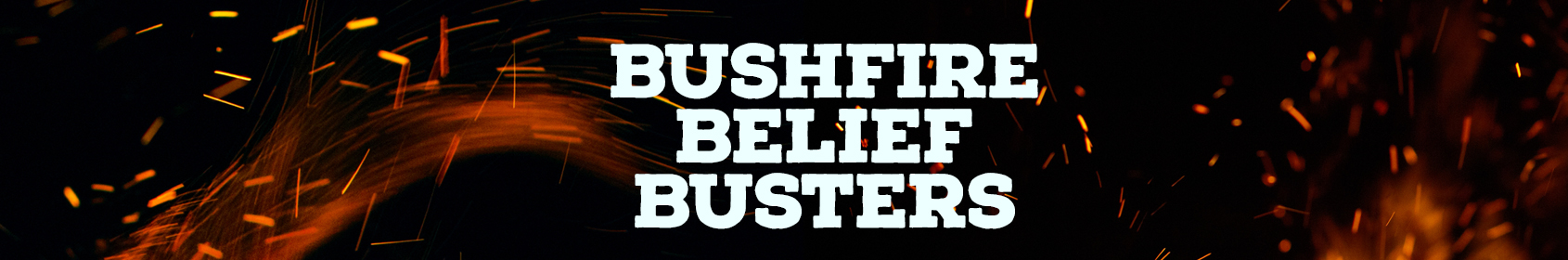 belief busters header graphic
