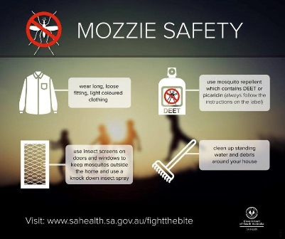 Click here to access information on Mozzie Safety - 'Fight the Bite' from SA Health